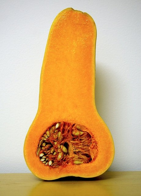 penis obst