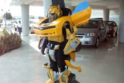 Bumblebee in Real Life